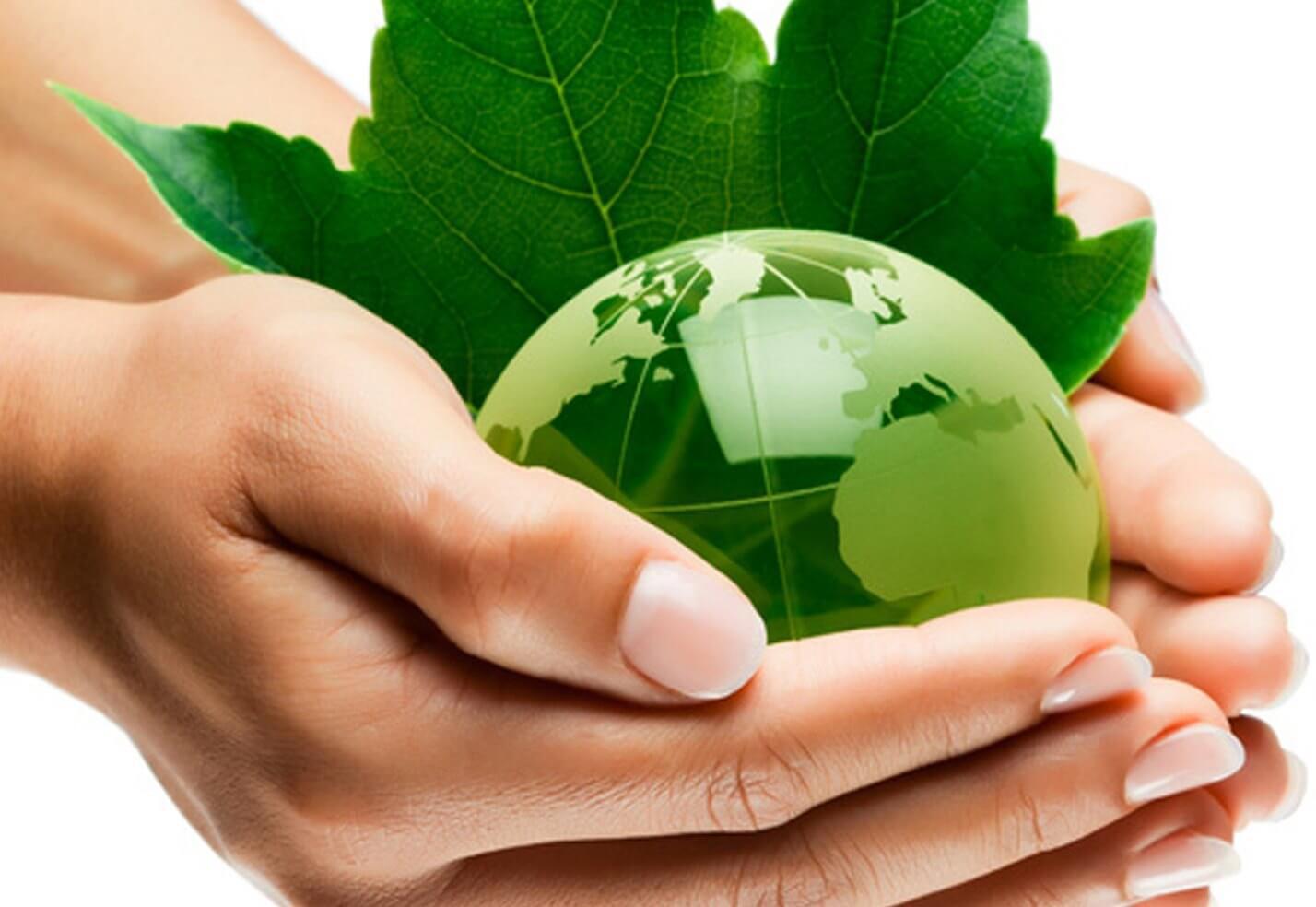 cuidados y certificados medio ambientales